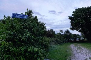 Radiointerview over fietssnelweg